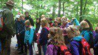 Viel zu erleben gab es für die Jahrgänge 5 bis 9 am großen Wandertag der Schule.